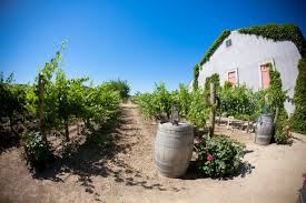 places to visit in thanksgiving the best time of the year to visit napa valley napavalley com