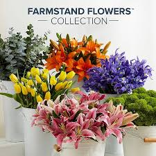 Where To Buy Edible Flowers - flowers online flower delivery send flowers proflowers