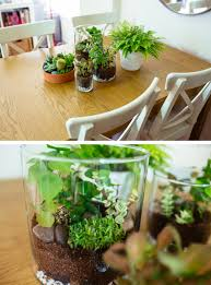 ikea project 1 bringing the outdoors in terrarium diy