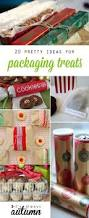 best diy cookie u0026 treat packaging ideas for christmas gifts