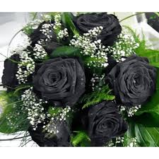 black roses delivery black roses 6 stems bouquet