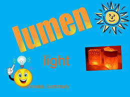what is the latin root meaning light greek and latin root affixes ppt