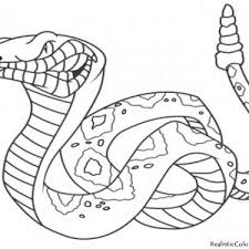 coloring pages of animals coloring coloring