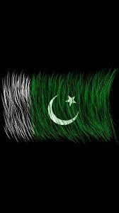 Pakistans Flag Pakistan Flag Brush Wallpaper By Rohailabbaszaidi Tdyrvv4psi2ig