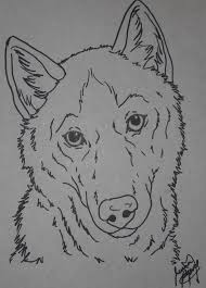 husky coloring page by canis simensis on deviantart