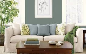 two colour combination for living room best color for living room