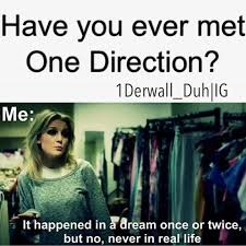 1d Memes Tumblr - memes tumblr one direction google search dedicated directioner