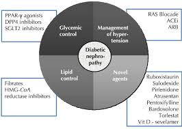 improvements in the management of diabetic nephropathy