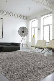 Carpets And Area Rugs College Apartment Tips How To Use Area Rugs To Cover Boring