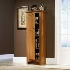 kitchen storage cabinets with doors wood storage cabinets with doors you ll in 2021