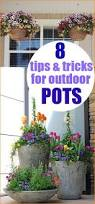 Plants For Patios In The Shade Best 25 Porch Plants Ideas On Pinterest Front Porch Plants