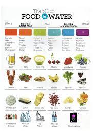 alkaline water malaysia best alkaline water malaysia ph of food