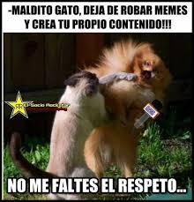 Crea Meme - dopl3r com memes maldito gato deja de robar memes y crea tu
