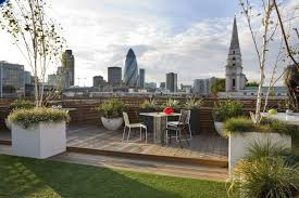 Rooftop Garden Ideas Swimming Pool In Front Yard Table On Green Rug Rooftop Garden