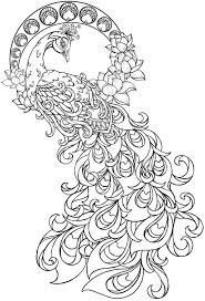 30 peacock coloring pages coloringstar