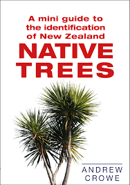 plants native to new zealand a mini guide to the identification of new zealand native trees by