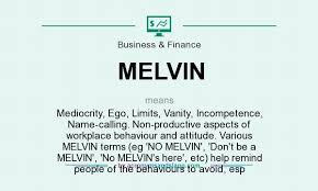 The Meaning Of Vanity What Does Melvin Mean Definition Of Melvin Melvin Stands For