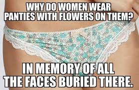 Panties In A Bunch Meme - dopl3r com memes why do women wear panties with flowersonthem