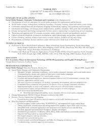 Technical Skills Resume Examples by Summary Of Skills Resume Examples Resume Examples 2017