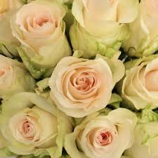 yellow roses with tips toscanini with light pink flowers collection