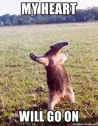 My Heart Will Go On Meme - my heart will go on anteater meme generator