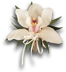White Orchid Corsage Corsages Delivery Orlando Fl Harry U0027s Famous Flowers