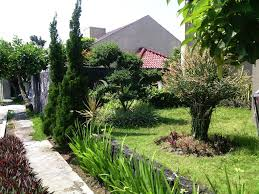Landscaping Ideas For Privacy Front Yard Landscaping For Privacy The Garden Inspirations