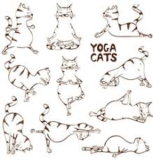 funny sketch cat doing yoga position royalty free vector