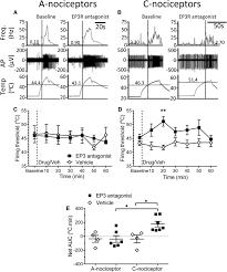 periaqueductal grey ep3 receptors facilitate spinal nociception in