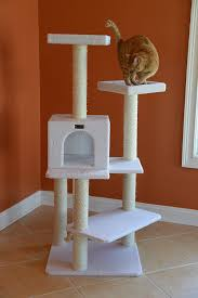 amazon com armarkat b5701 57 inch cat tree ivory pet supplies