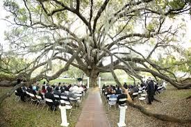table and chair rentals orlando wedding videography osc meetings events