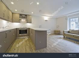 modern open plan kitchen modern open plan kitchen hard wood stock photo 47746081 shutterstock