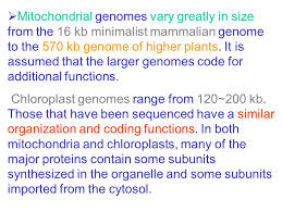 how many genes are there ppt video online download