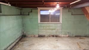 mold removal in basement what causes basement mold basement mold
