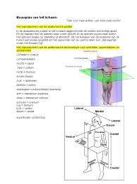 Kleiner B Otisch Orgaansystemen Pdf