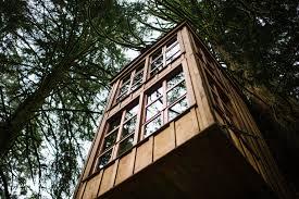 Treehouse Point Wa - christina jim treehouse point fall city wa love