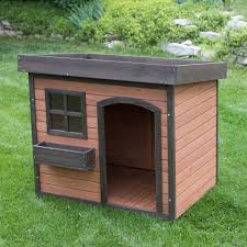 boomer u0026 george lucky green roof dog house hayneedle