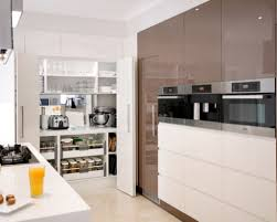 Interiors Of Kitchen Cupboard Designs For Kitchen Kitchen Cupboards Designs New