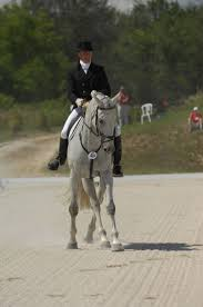 94 best ogilvy equestrian team riders images on pinterest show