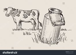 milk cans grass country style vector stock vector 557155498