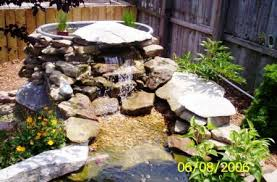 Catfish Backyard Pond by Pond Of The Month Pond Pictures