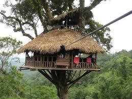 127 best tree houses images on diy tree house tree