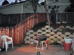outdoor cat fence how to make fence