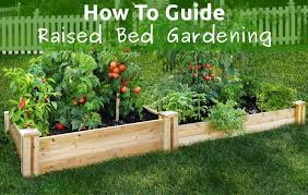 incredible planting raised beds the perfect soil mixture for