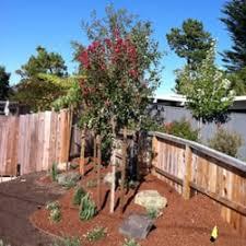jc tree care landscape 44 photos 100 reviews tree services