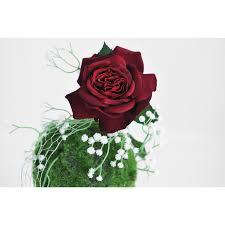composition florale avec des roses composition florale à base de rose rouge gypsophile et mousse verte