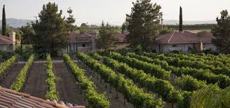 wineries in temecula ca south coast winery