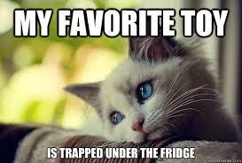 Anxiety Cat Memes - anxiety cat memes annesutu