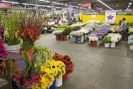san francisco florist 25576d1278697800 san francisco flower market flower 3 jpg