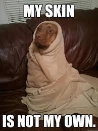 Peanut Butter Meme - dog emperor of dune dune know your meme